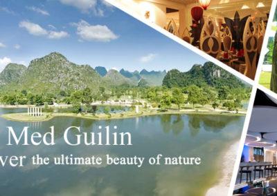 2012 - Gulin