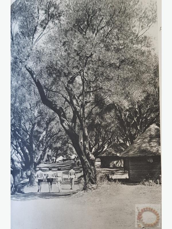 Le Club par l'image Avril 1959 - Archive Collierbar