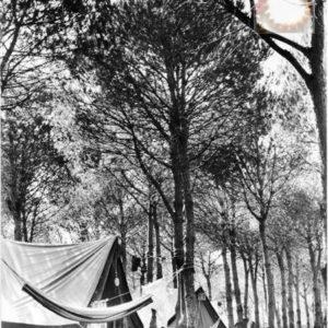 Les tentes du Village Magique Caprera 1955 Carte postale ancienne