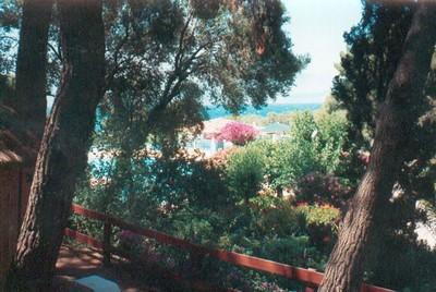 Aighion 1993