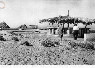 Le bar sur la plage - 1954